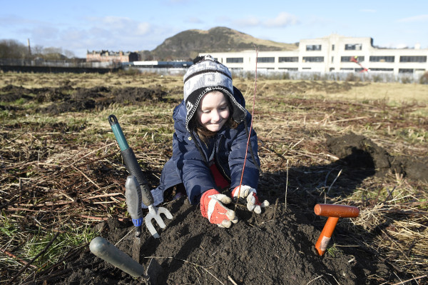 Pic Greg Macvean - 18/02/2016 - 07971 826 457 Greenfingered residents of Craigmillar come together to support a planting day held by the EDI Group and City of Edinburgh Council in partnership with Edinburgh and Lothians Greenspace Trust. Willow trees are planted in the area behind Craigmillar Library - Lauren Sales (5) from Castleview Primary plants a tree
